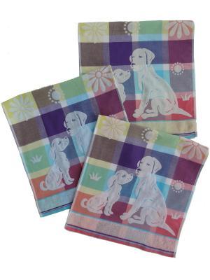 Набор полотенец A and C Collection. Цвет: голубой, розовый