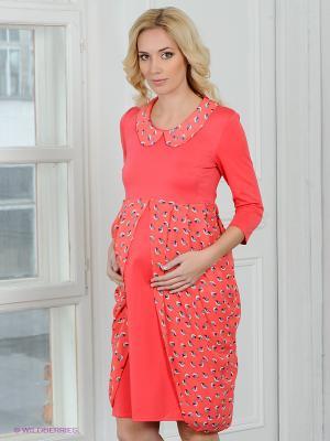 Платье Nuova Vita. Цвет: коралловый