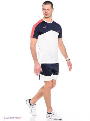Шорты IT evoTRG Shorts Puma. Цвет: темно-синий, белый