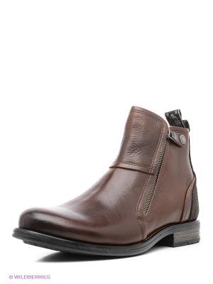 Ботинки Sneaky Steve. Цвет: коричневый