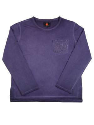 Лонгслив VATAGA. Цвет: фиолетовый