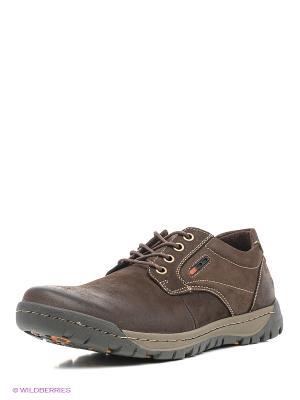 Ботинки ANDRE KLEMA. Цвет: коричневый