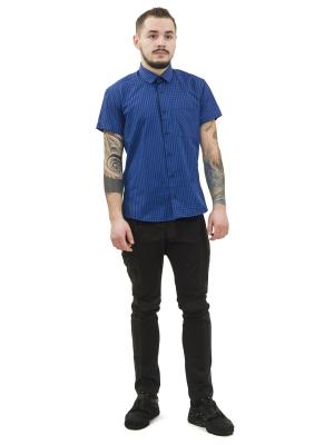 Сорочка DOCTOR E. Цвет: синий, черный