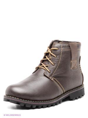 Ботинки Shoiberg. Цвет: темно-коричневый