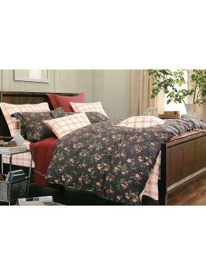 Комплект постельного белья, Семейный Sofi de Marko. Цвет: черный
