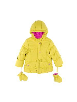 Куртка Coccodrillo. Цвет: светло-зеленый