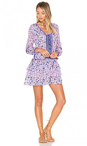Мини платье bobo Poupette St Barth. Цвет: фиолетовый
