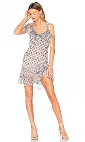 Платье karlie SAM&LAVI. Цвет: серый