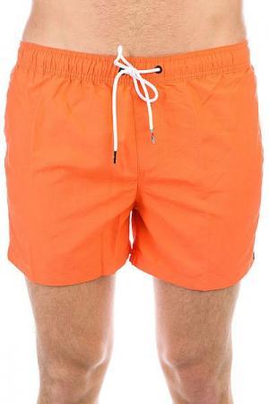 Шорты пляжные  Azurvolley14 Nasturtium Quiksilver. Цвет: оранжевый