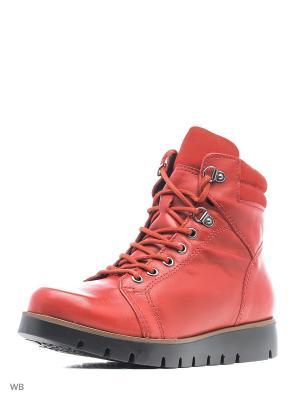 Ботинки Bottero. Цвет: красный