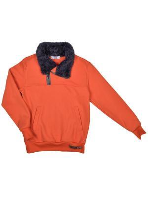 Джемпер Bell bimbo. Цвет: оранжевый