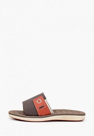 Сланцы Cartago. Цвет: коричневый