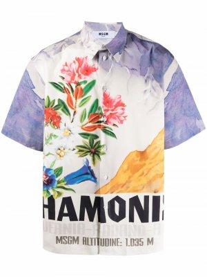 Рубашка с короткими рукавами и цветочным принтом MSGM. Цвет: белый
