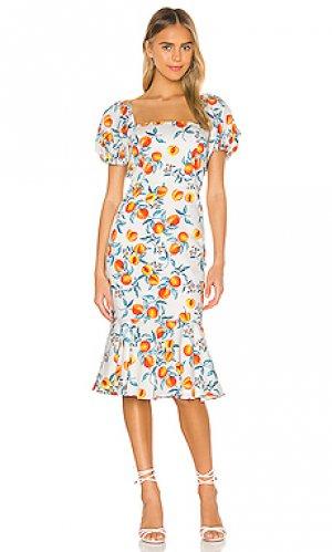 Платье миди senorita Amanda Uprichard. Цвет: белый