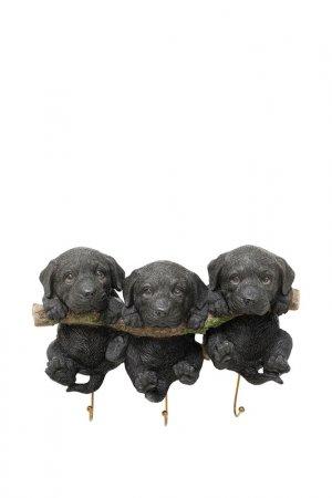 Вешалка настенная Puppies Kare. Цвет: черный