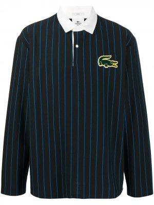 Рубашка-регби в тонкую полоску с нашивкой-логотипом Lacoste. Цвет: черный