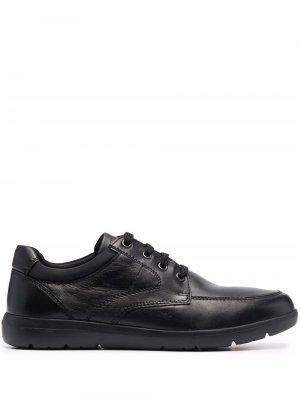 Кроссовки на шнуровке Geox. Цвет: черный