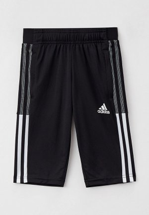 Бриджи adidas. Цвет: черный