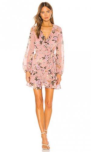 Мини платье frill Bardot. Цвет: розовый