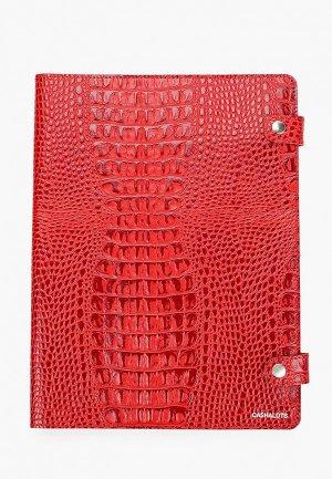 Обложка для документов Cashalots формат А4. Цвет: красный