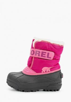 Дутики Sorel CHILDRENS SNOW COMMANDER™. Цвет: розовый
