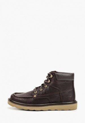 Ботинки Caterpillar BYRON. Цвет: коричневый