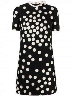 Polka dot shift dress Valentino. Цвет: черный