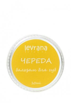 Бальзам для губ Levrana Череда, 10 гр