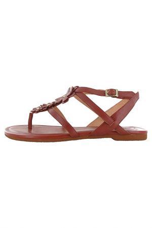 Сандалии Flip Flop. Цвет: коричневый