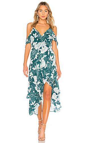 Платье floral Bardot. Цвет: темно-зеленый