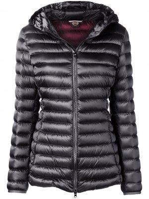 Стеганая приталенная куртка Colmar. Цвет: серый