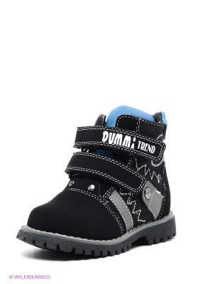 Ботинки Dummi. Цвет: черный