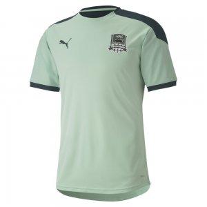 Футболка FCK Training Jersey PUMA. Цвет: зеленый