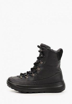 Ботинки Ecco SOLICE K. Цвет: черный