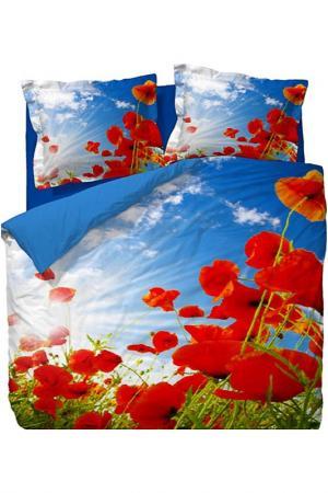 КПБ 1,5сп. Red flowers Elegance. Цвет: голубой