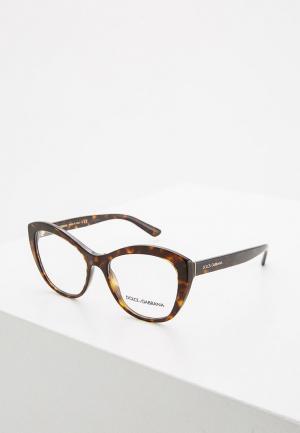 Оправа Dolce&Gabbana DG3284 502. Цвет: коричневый