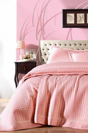 Комплект постельного белья Cotton box. Цвет: powder