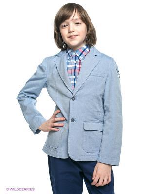 Пиджак Jbe. Цвет: синий