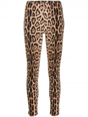 Легинсы с леопардовым принтом Roberto Cavalli