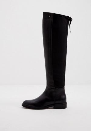 Ботфорты Trussardi Jeans. Цвет: черный