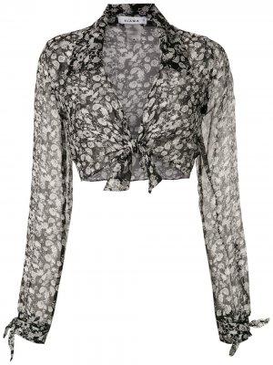 Рубашка Margarida Amir Slama. Цвет: черный