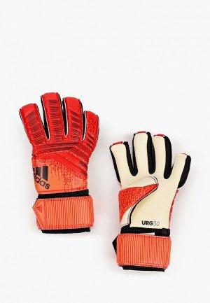 Перчатки вратарские adidas PRED LEAGUE. Цвет: красный
