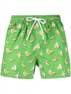 Плавки-шорты с принтом Kiton. Цвет: зеленый