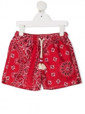 Плавки-шорты Caprese с принтом Mc2 Saint Barth Kids. Цвет: красный