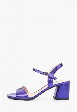 Босоножки Argo. Цвет: фиолетовый