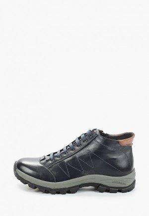 Ботинки Franco Bellucci. Цвет: синий