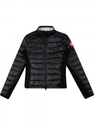 Куртка HyBridge Lite Canada Goose. Цвет: черный
