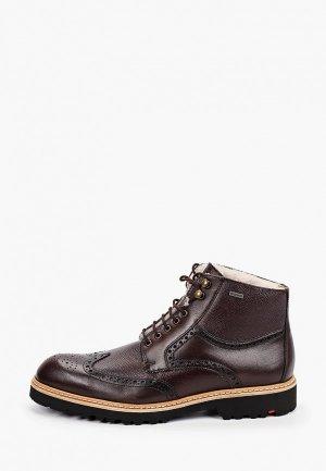 Ботинки Lloyd VARON. Цвет: коричневый