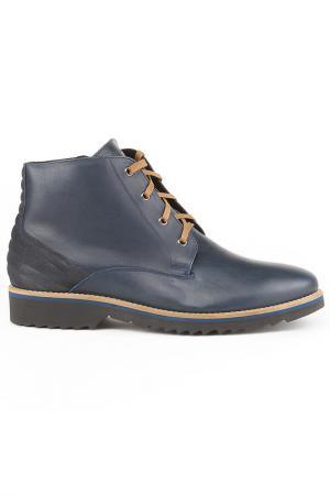 Ботинки Conhpol. Цвет: синий
