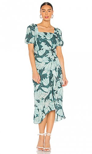 Платье mackenzie Parker. Цвет: зеленый